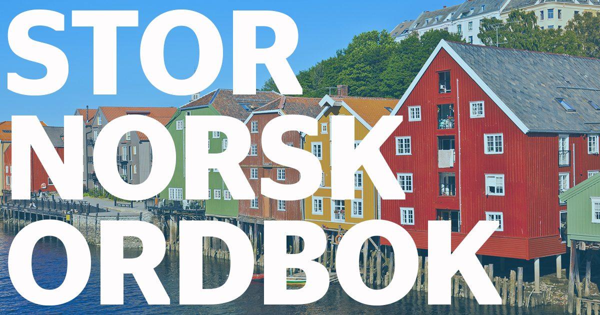 Norsk rettskrivningsordbok p? nett gratis